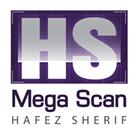 mega scan